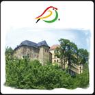 Stadt Oelsnitz